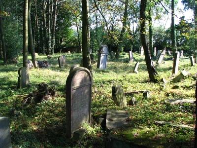 Židovský hřbitov v Terešově